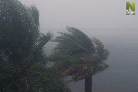 Nevyzpytatelné počasí ukazuje jevy, které jsme dosud neznali!