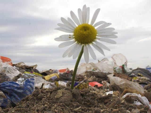 Dotace EU pomohou snížit množství odpadu