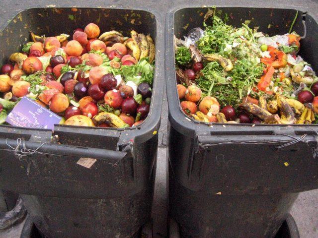 Podpořte projekt veřejných lednic a pomozte tak omezit plýtvání jídlem